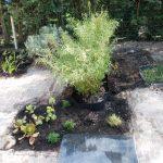 Praktische Tuinen Lissy Hurkans Wageningen Voorbeelden van tuinontwerpen